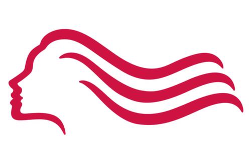Logó felismerő kvíz Wella logó