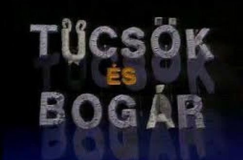80-as évek magyar tévéműsorai 1