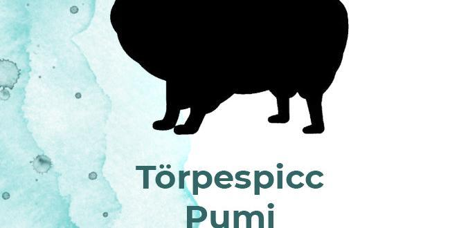 torpespicc1