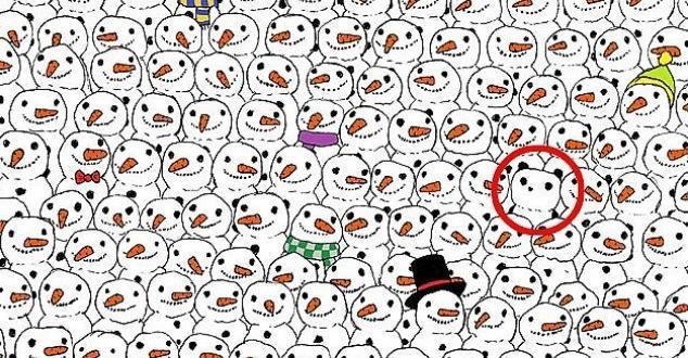 Keresd a pandát megoldás
