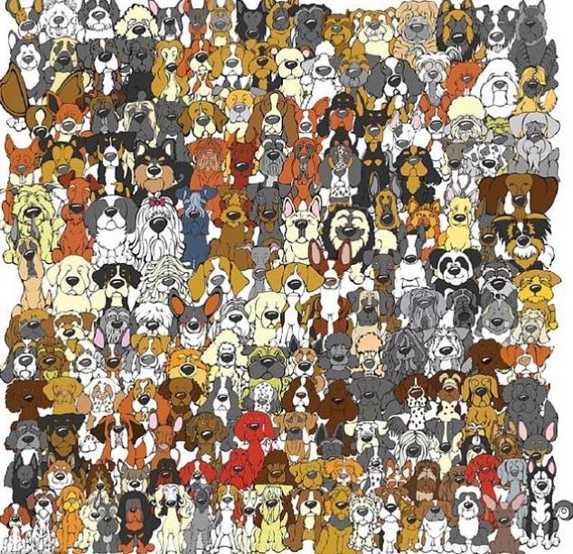 panda kereső 1