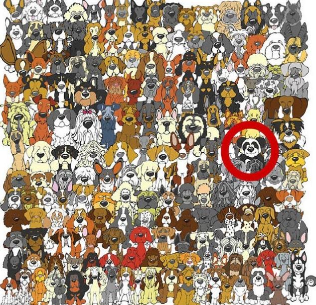 panda kereső 2