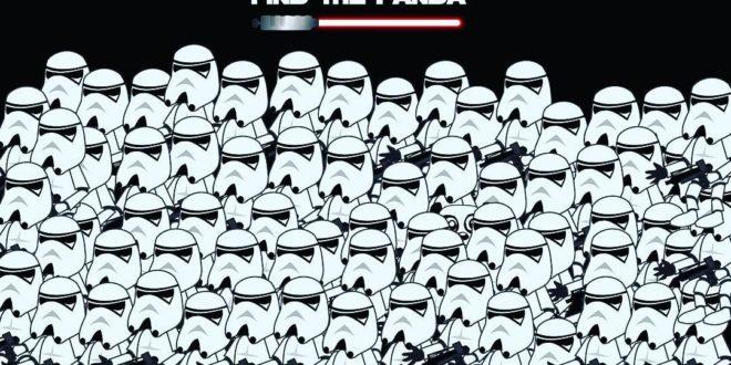 star wars hol a panda 1