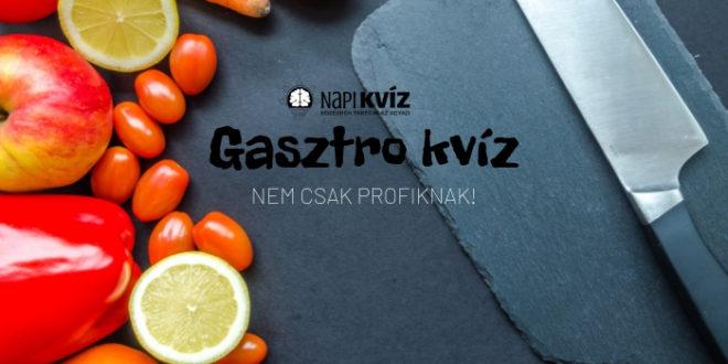 8_Gasztro_kviz_jo_szakacs_vagy_borito